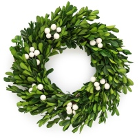 https://www.target.com/p/10-5-preserved-boxwood-wreath-sugar-paper-153/-/A-53724906